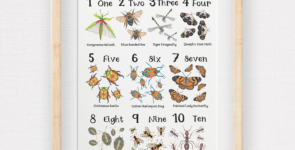 The Australian Big Bug Count Poster