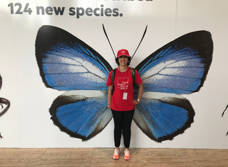VOLUNTEERING AT QUEENSLAND MUSEUM