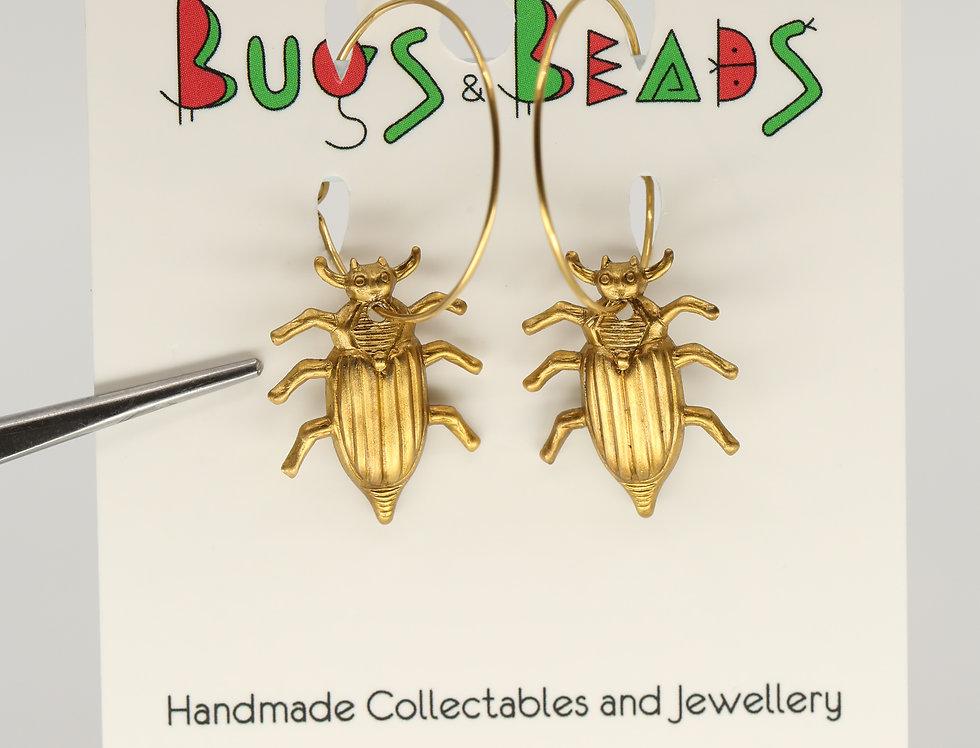 Stylish beetles on a loop