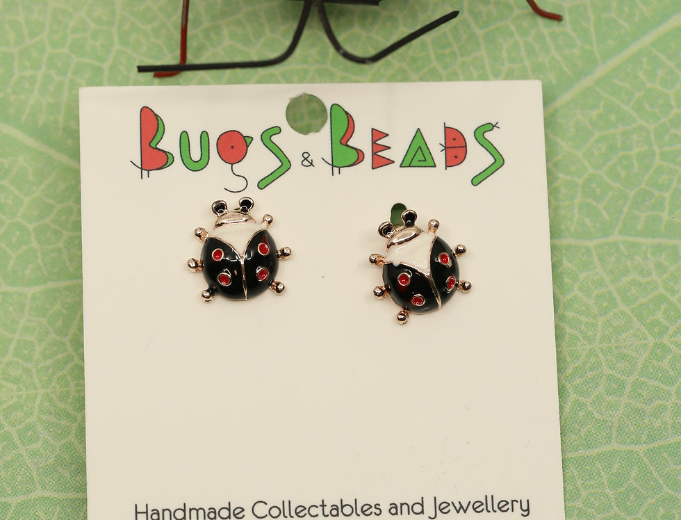 Ladybird beetle Studs - Black