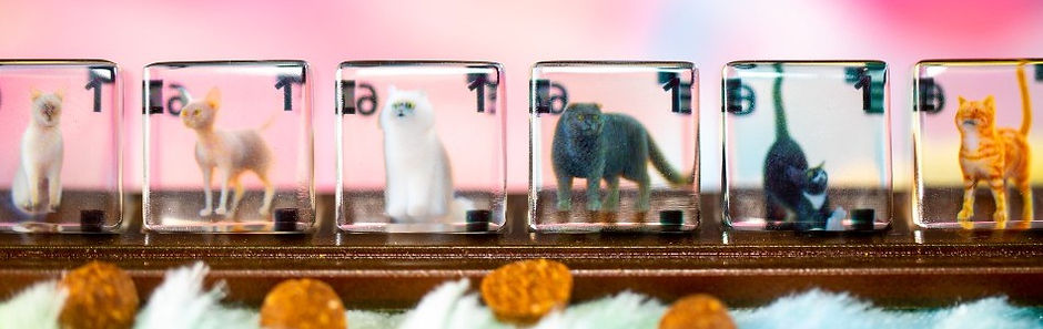 Kitty Cafe 3D printed dice