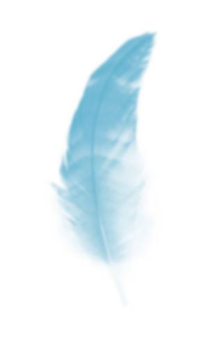 Angel guidance reading