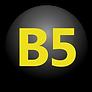 bo5-logo.png