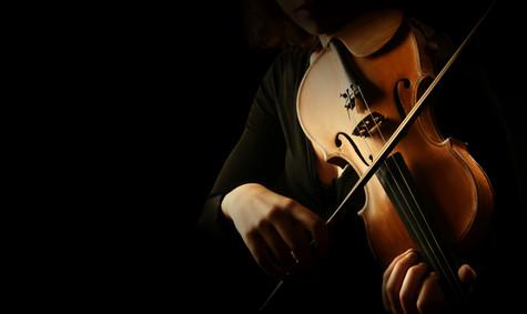 Violin player. Violinist hands playing v