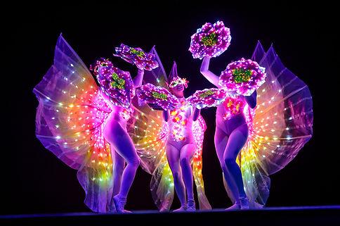 led-tanz-future-butterflies-schmetterlin