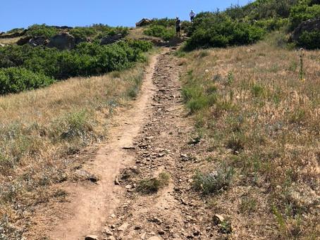 Poem: The Hiker