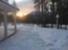 winter proch.jpg