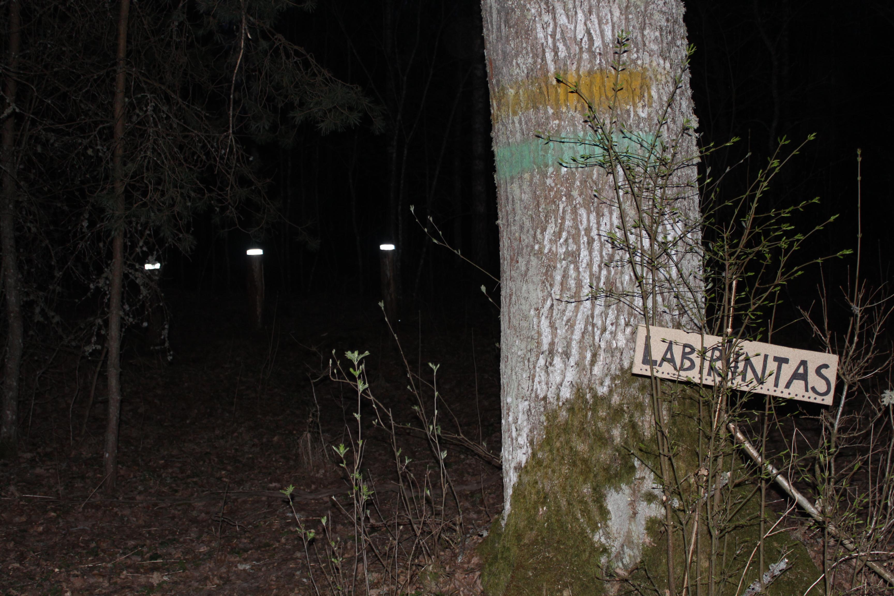 Labirintas naktį