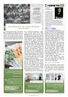 News KW32-2020