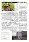 VermieterPRO Newsletter 13-21.png