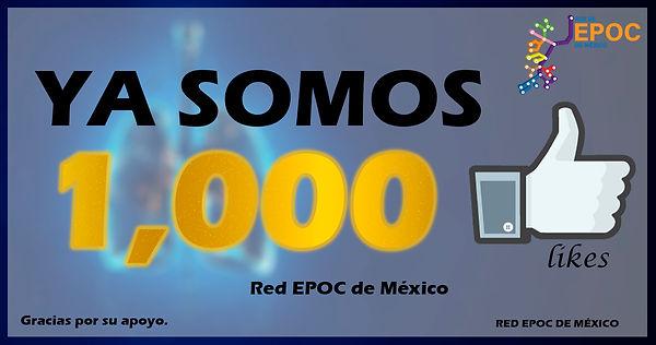1000 seguidores web.jpg