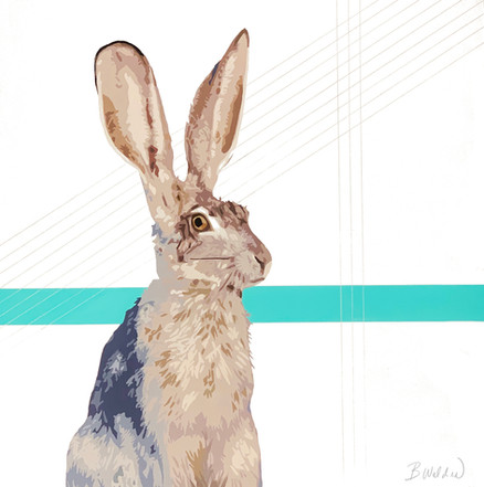 Silver Lined Rabbit