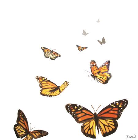 Butterfly Flock