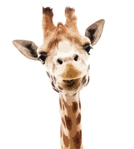Diem Giraffe