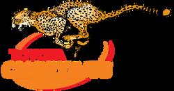 Cheetahs_Rugby