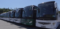 Row of Coaches for Hire