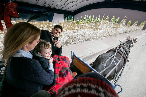 Jaunting carriages take visitors through