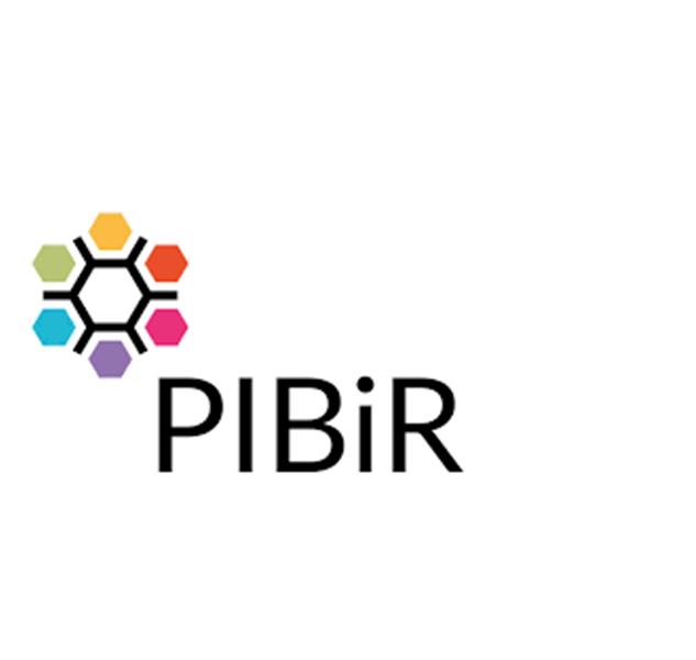 Logo PIBIR.png