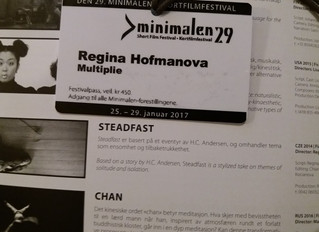 Screening of Steadfast at #Minimalen Festival in Norway
