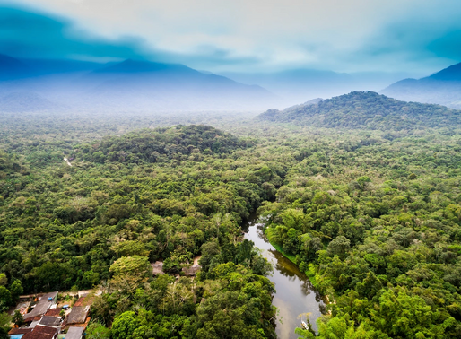 The Amazon is not a common good but the Earth System is