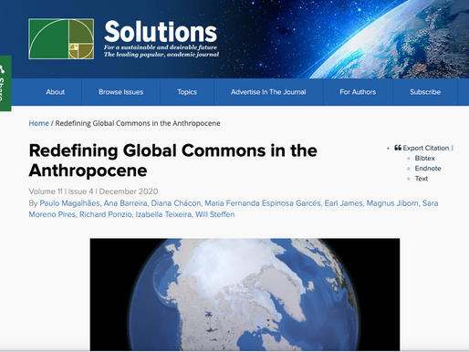 Redefining Global Commons in the Anthropocene