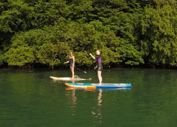Helford River SUP Tour