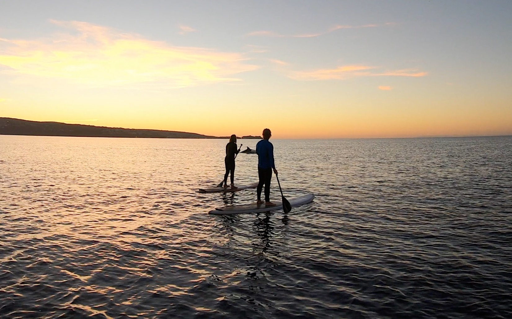 sunset SUP with dolphins