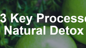 The 3 Key Processes to Natural Detox