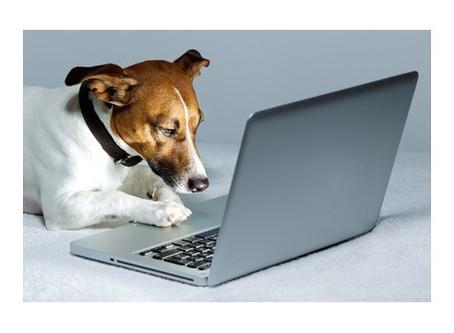 Notre service de réservation en ligne