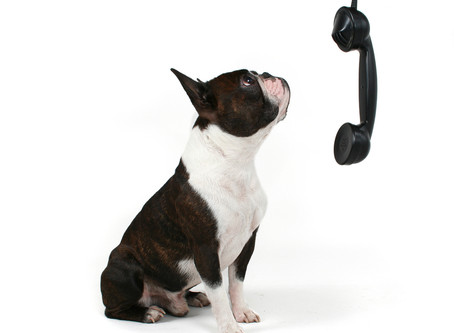 L'art de bien communiquer ...