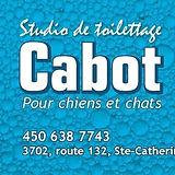 StudioCabot.jpg