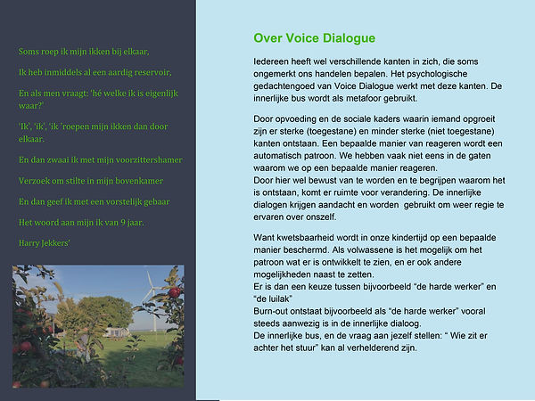 voice dialogue brochure vervolgtraining 2021-2.jpg