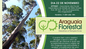 Araguaia Florestal, Desafios e Perspectivas