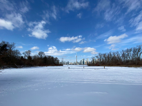 Help shape the future of Toronto Island