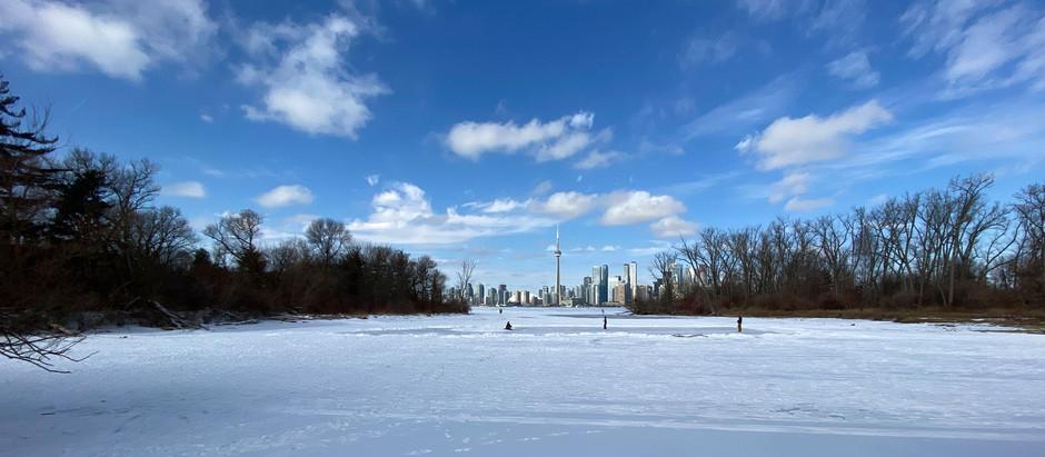Help shape the future of Toronto Island