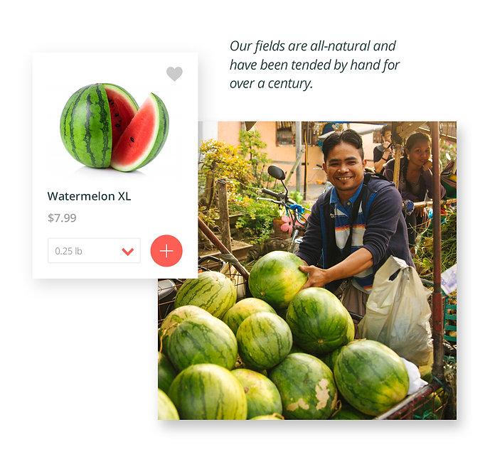 Homepage-Images02.jpg