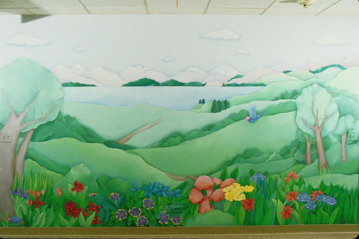 Highland Park Hospital Pyschiatric Floor mural, 9' x 28'