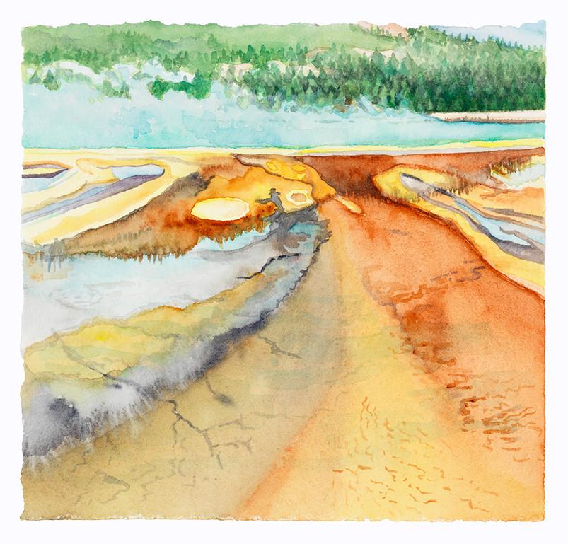 Land of Vapors (Yellowstone NP) wc