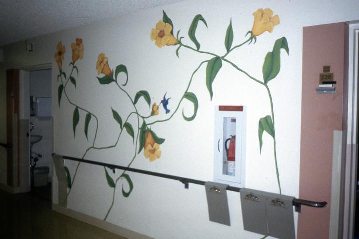 St. John's Hospital hallway