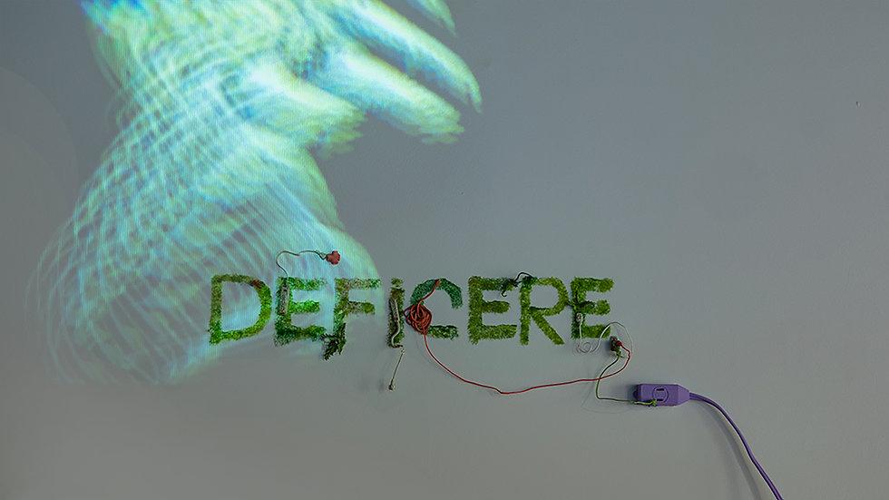 deficere1.jpg