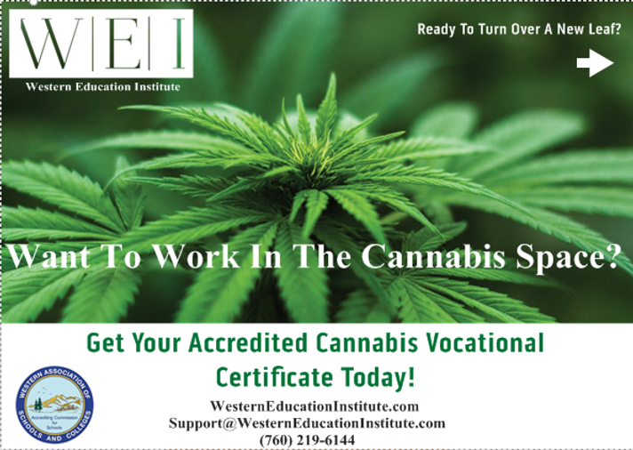 Cannabis Business Management Card Side 1