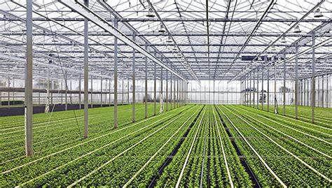 Farm Maintenance, Structures & System