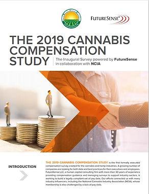 NVIA Compensation Study.JPG