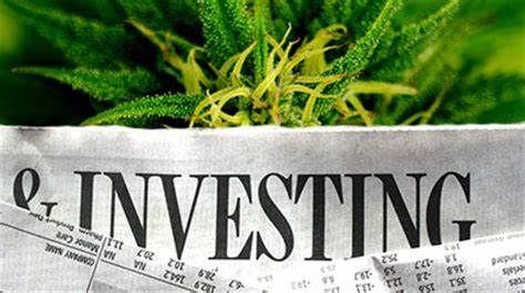 Cannabis Investing & Fund Development