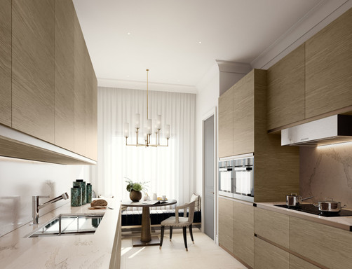 Moscow residential development kitchen