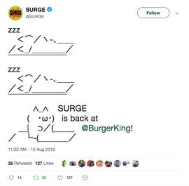 SURGE Kitten Waking