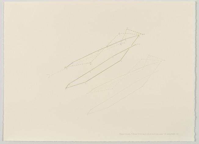 Papaver Somniferum, August 19B