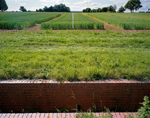 Broadbalk Wheat Experiment