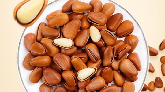 Red Pine Nut