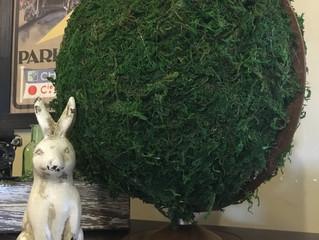 DIY Moss Globe Tutorial